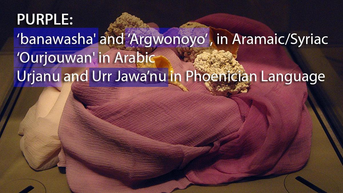 """""""Banawasha – Argwonoyo – Urjanu – Urr'jawa'nu"""" Sebutan Warna Ungu dalam Bahasa Aram, Bahasa Suryani, dan Bahasa Phoenicia, Yang Kental BernuansaJawa"""